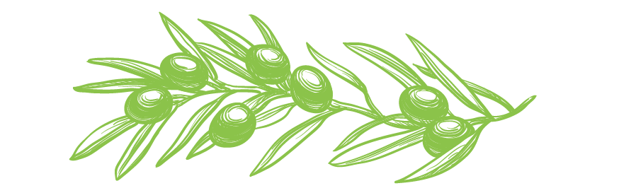 olivebranch-03